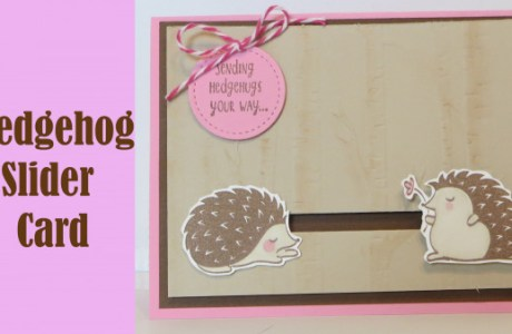 Project: Hedgehog Slider Card