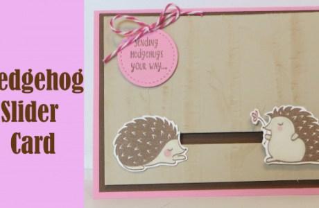 Project: Hedgehog Slider Card