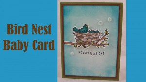 Project: Bird Nest Baby Card