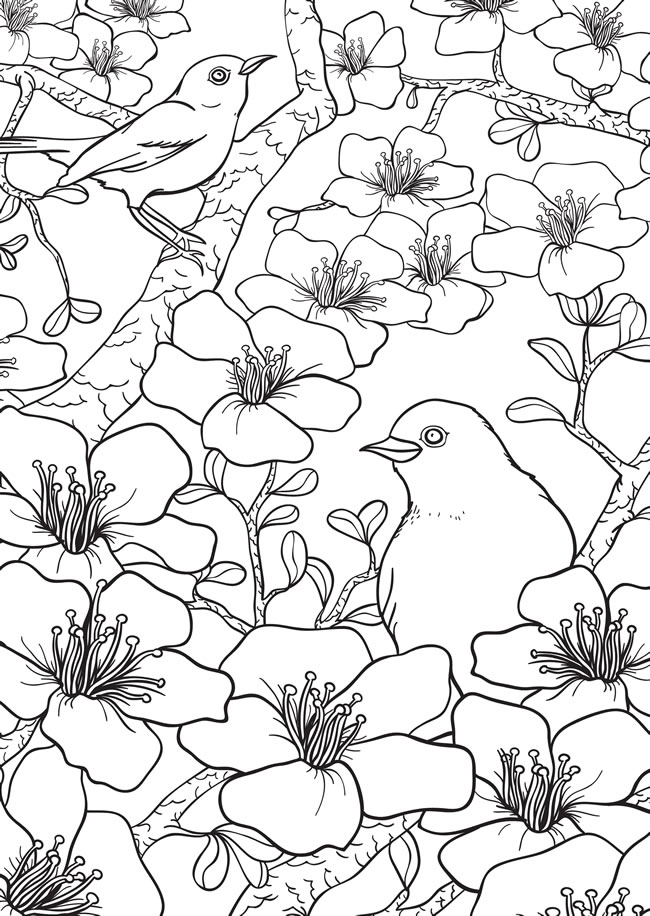 birdflowerspage