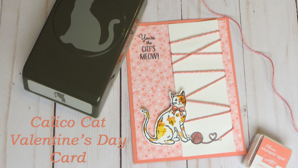 Calico Cat Valentine's Day Card