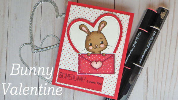Bunny Rabbit Valentine's Day Card
