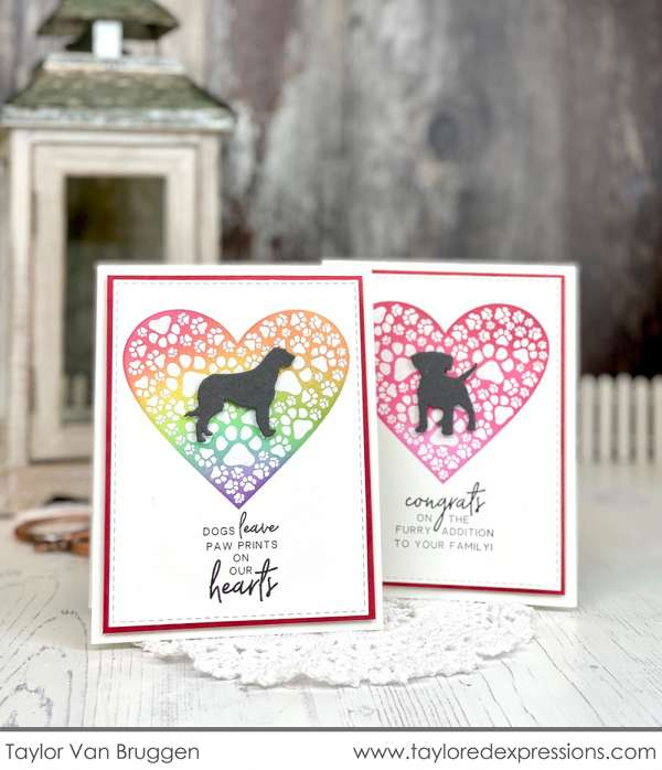 Dog and Puppy Pet Cards