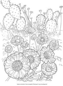 6 Desert Blooms Coloring Pages