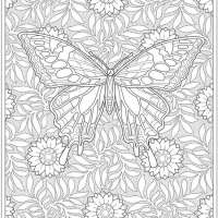 6 Butterfly Coloring Pages