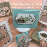 Free as a Bird Class to Go. Learn to create these six beautiful projects. #Stampin
