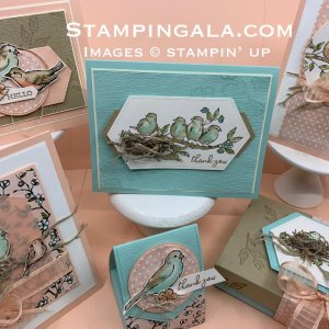 Free as a Bird Class to Go. Learn to create these six beautiful projects. #Stampin' Up, #Stampin' Gala, #Treat Holders, #greeting cards