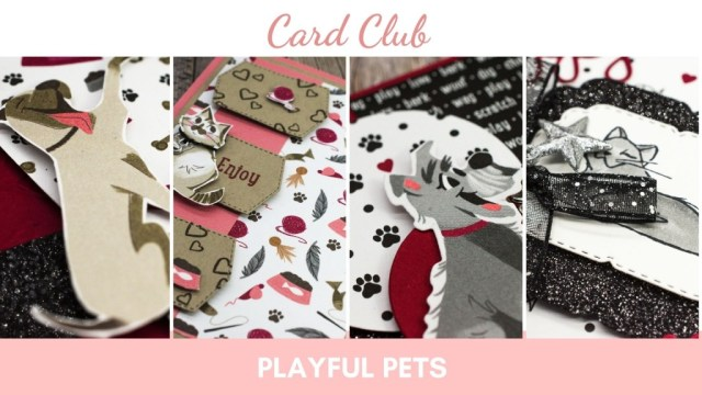 December 2020 Card Club, Playful Pets