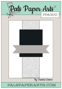 PPA-300-May12
