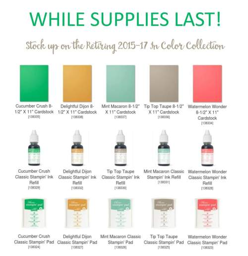 Purchase the retiring 2015-17 Retiring In Colors at www.StampingMom.com Please see card and gift ideas at www.StampingMom.com #StampingMom #cute&simple4u