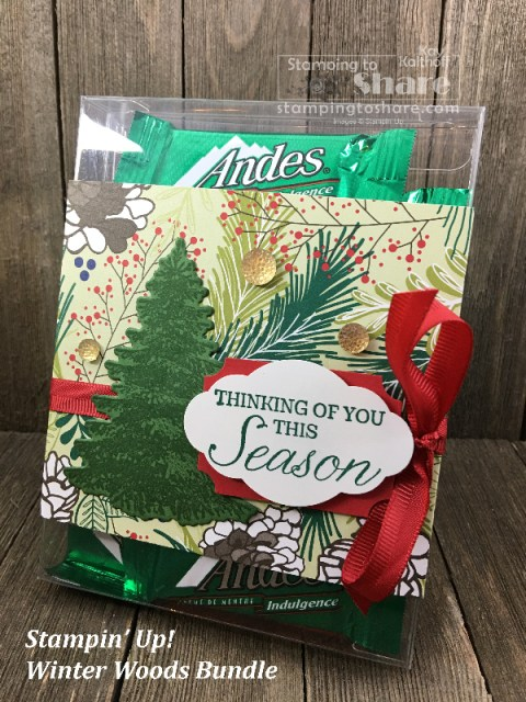 Stampin' Up! Winter Woods Bundle decorating an Acetate Care Box created by Kay Kalthoff for #stampingtoshare