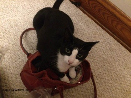 tux-in-my-purse