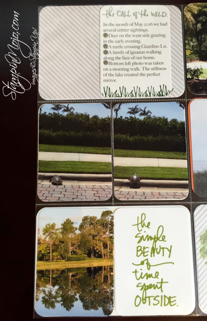 stampin up, project life, capturing the everyday - Michelle Gleeson, scrapbooking