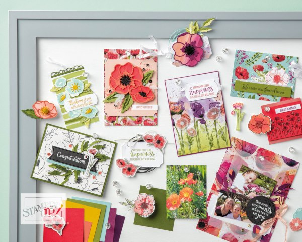 Peaceful Poppies Suite by Stampin' Up! Catalog Image