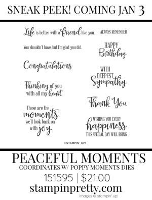 Peaceful Moments Stamp Set by Stampin' up! 151595