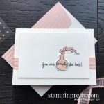Varied Vases Stamp Set by Stampin