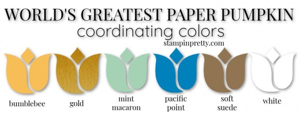 Coordinating Colors - World's Greatest Paper Pumpkin Kit