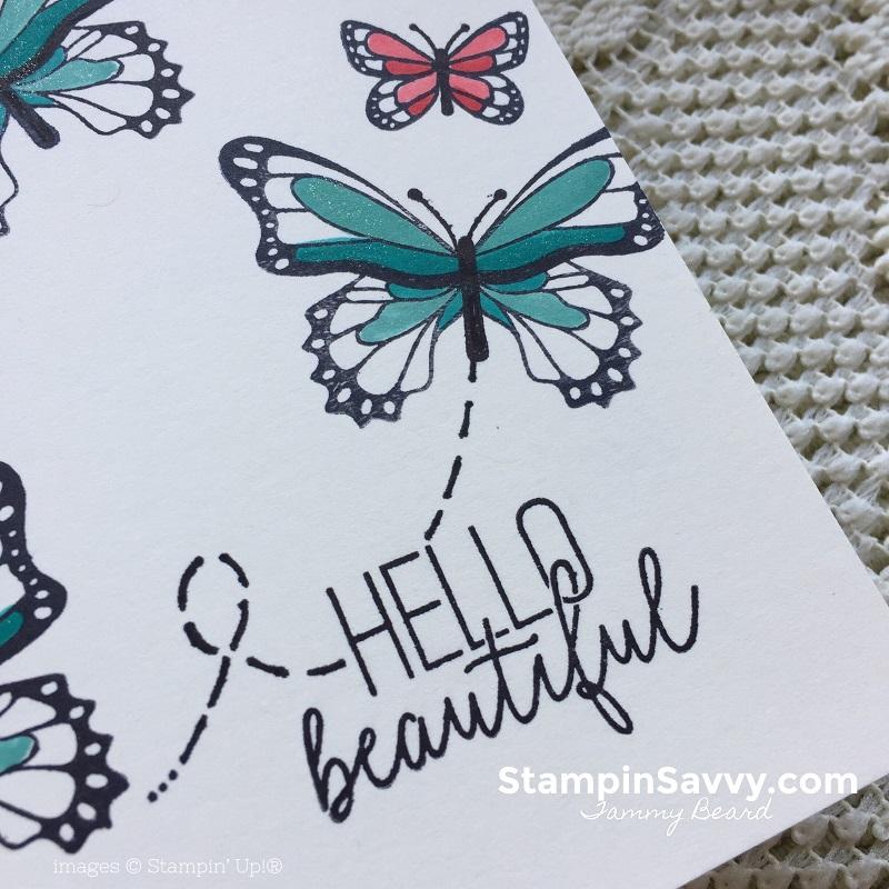 butterfly-gala-cards-stampin-savvy-stampin-up-stampinup-tammy-beard1