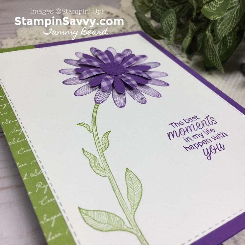 DAISY-LANE-BUNDLE-SIMPLE-CARD-IDEA-TAMMY-BEARD-STAMPIN-SAVVY-STAMPIN-UP-STAMPINUP4