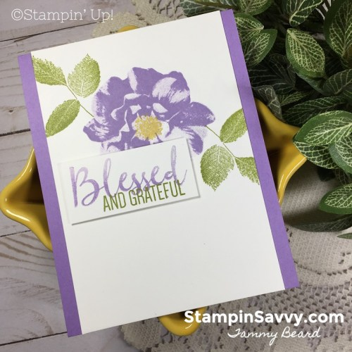 SIMPLE-STAMPING-TO-A-WILD-ROSE-CARD-IDEAS-STAMPIN-UP-TAMMY-BEARD-STAMPIN-SAVVY