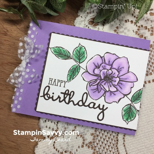 TO-A-WILD-ROSE-CARD-STAMPIN-BLENDS-STAMPIN-UP-STAMPIN-SAVVY-TAMMY-BEARD