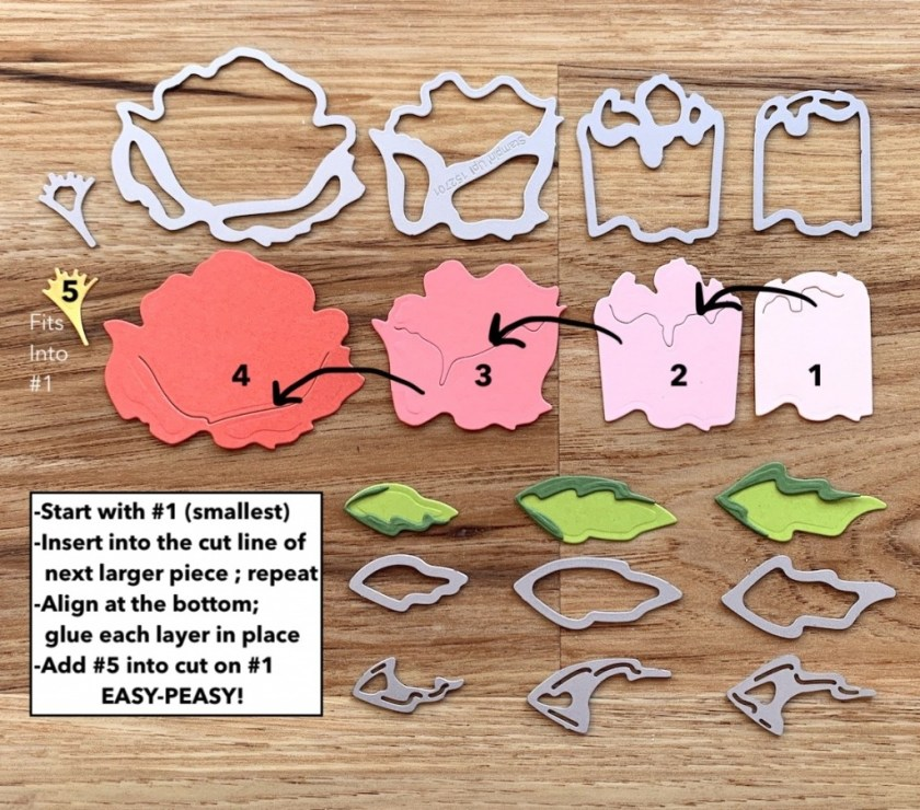 PEONY-DIES-HOW-TO-ASSEMBLE-TAMMY-BEARD-STAMPIN-SAVVY-3