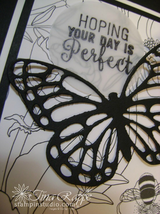 Stampin' Up! Inside the Lines Designer Series Paper, Sale-a-bration 2017. Butterflies Thinlits, Stampin' Studio