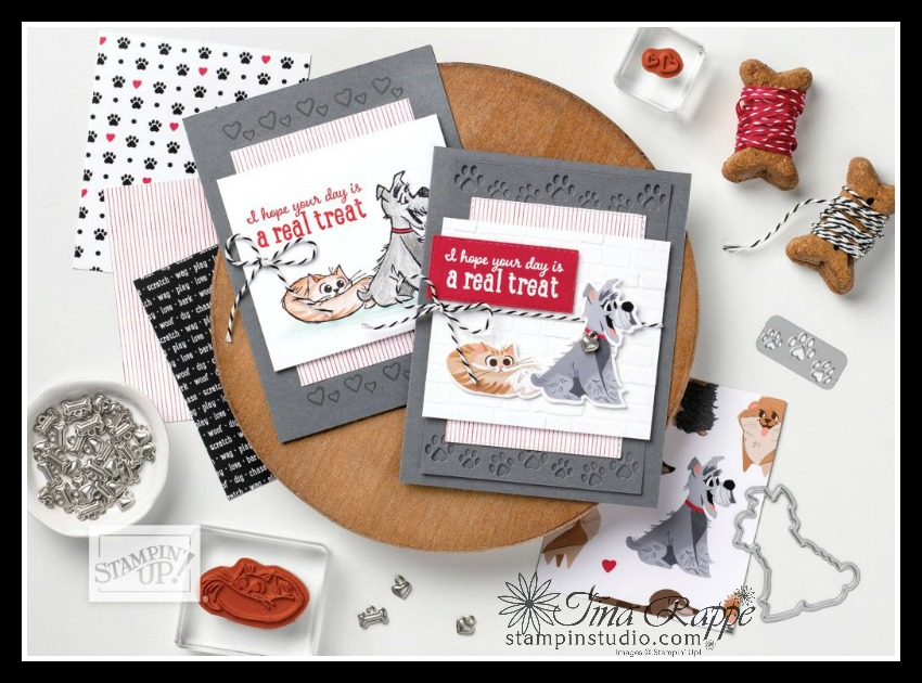 Stampin' Up! Playful Pets Suite, Pampered Pets stamp set, Pets Dies, Playful Pets DSP, Stampin' Studio