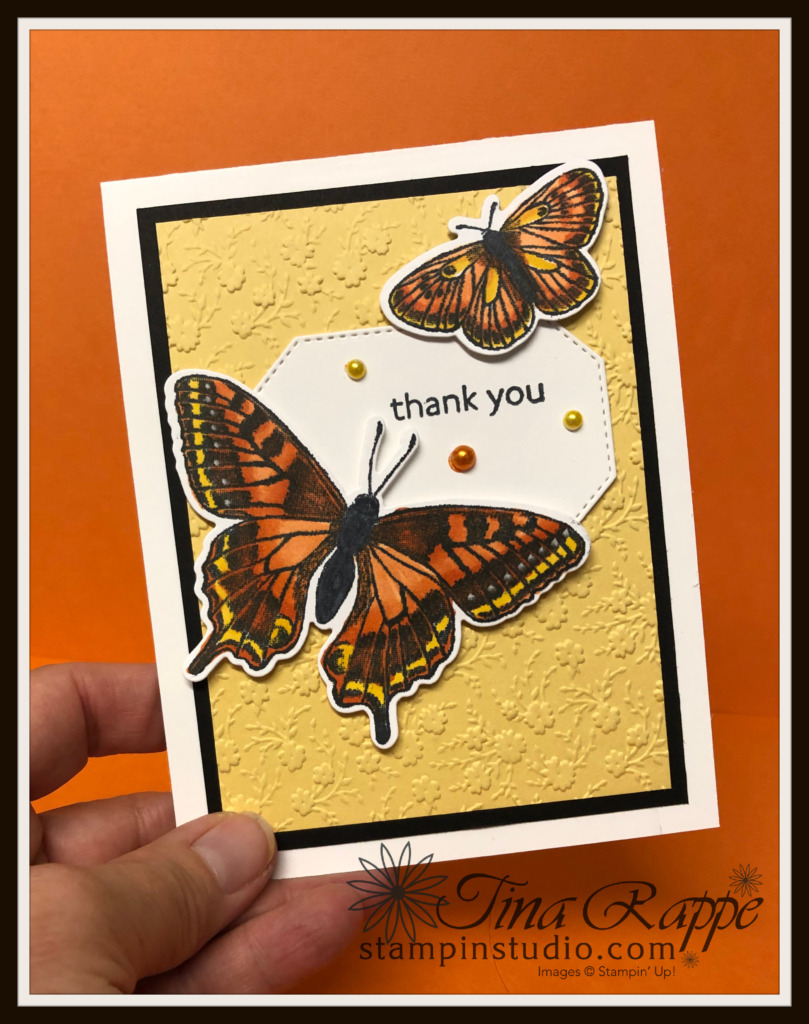 Stampin' Up! Butterfly Brilliance stamp set, Brilliant Wings Dies, Stampin' Studio