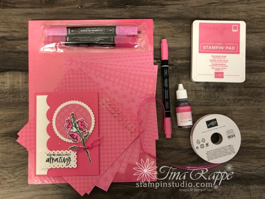 Stampin' Up! Color & Contour Bundle, Polished Pink In Color Club, Stampin' Studio