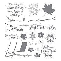 Colorful Seasons Photopolymer Stamp Set