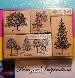 Stampin Up LOVELY AS A TREE Wood Stamp Set Amp Matching