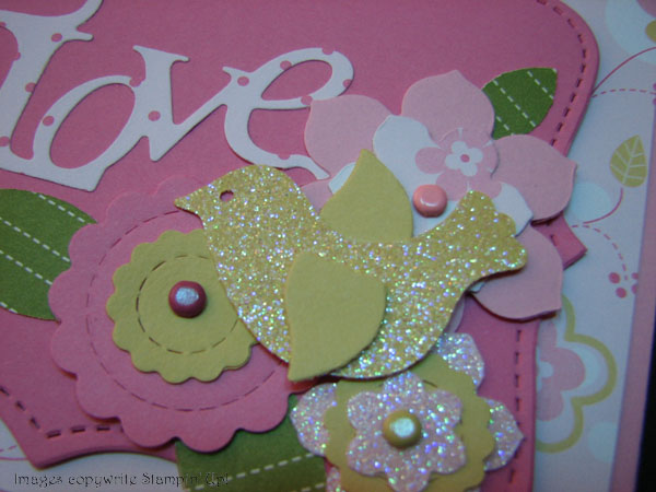 love-sparkly-bird-close
