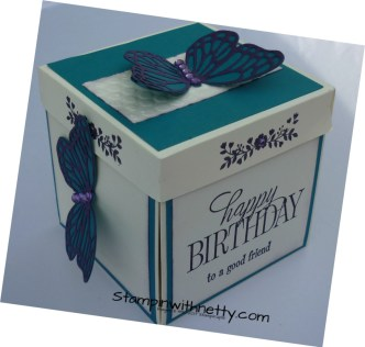 Explosion Box Butterfly Birthday Card Closed2 Stampin Up Annette McMillan 15022018