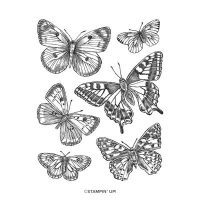 Butterfly Brilliance Wings Cling Stamp Set
