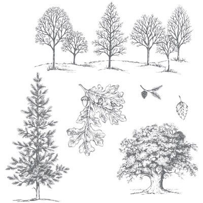 Lovely As A Tree Stamp Set by Stampin' Up