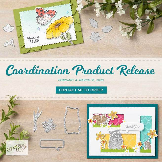 Coordination Product Release from Stampin' Up
