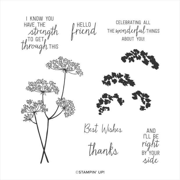 Stampin Up Queen Anne's lace Stamp Set Image