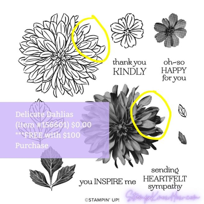 Delicate Dahlias Stamp Set by Stampin' up!