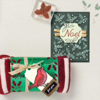 StampMeCrafty, Blog Candy Giveaway, Happy Holly-Days Bundle, Stampin' Up!