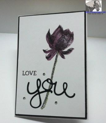 Lotus Petal Love You 3 Watermarked