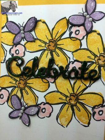 Celebrate CTS 133 closeup watermarked