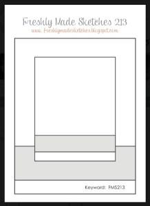 FMS 213 Sketch