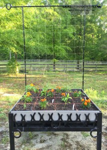Veggie bed - Stamps-N-Lingers