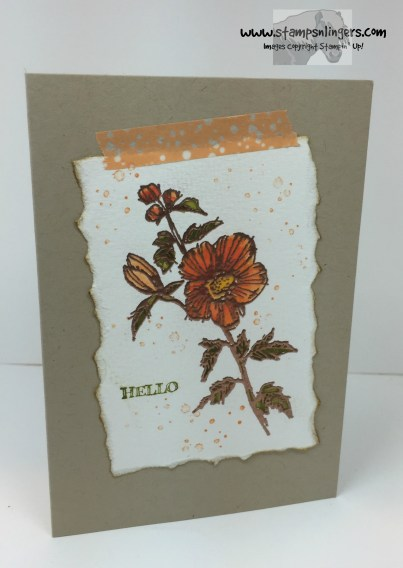 Fabulous Flora Notecard 2 - Stamps-N-Lingers