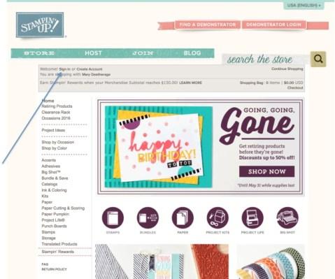 Online store 1