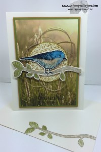 Best Birds Sympathy 6 - Stamps-N-Lingers