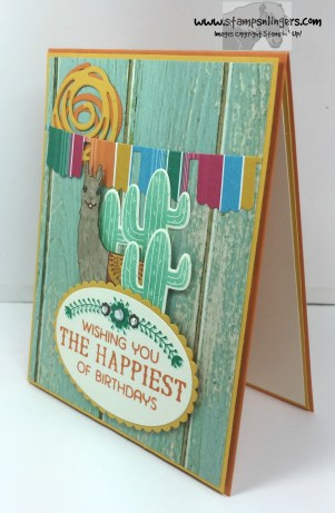 Birthday Fiesta Birthday Card 3 - Stamps-N-Lingers