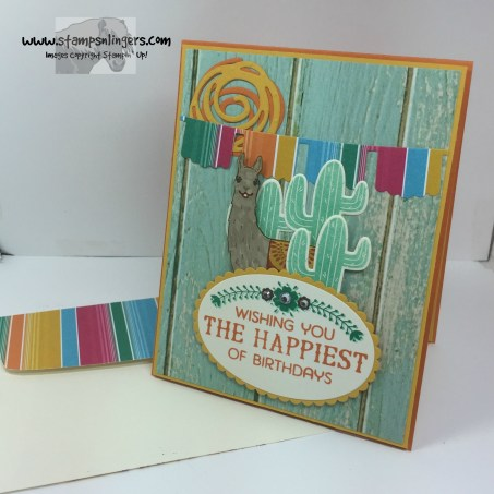 Birthday Fiesta Birthday Card 7 - Stamps-N-Lingers