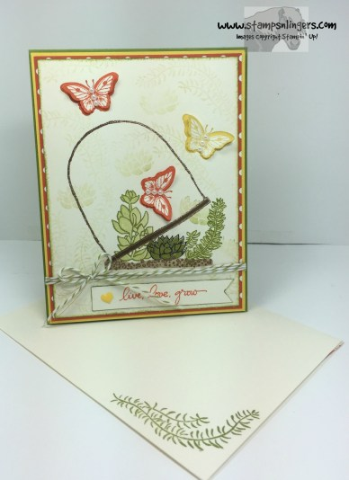 Live, Love, Grow Butterflies 6 - Stamps-N-Lingers